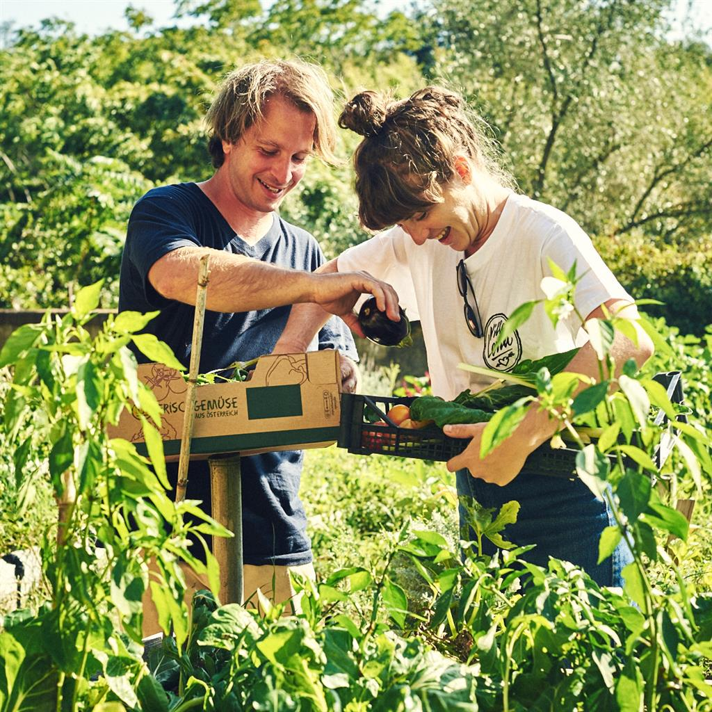 Creative vision: The rotating community of artists and guests eat, drink and play in the grounds and garden PICTURE: LOUISE PALMBERG