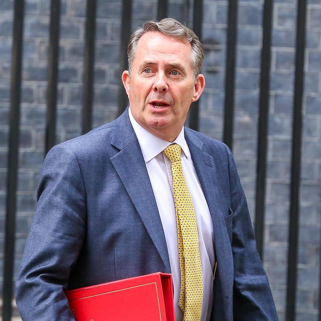 Crash alert: Trade secretary Liam Fox PICTURE: AP