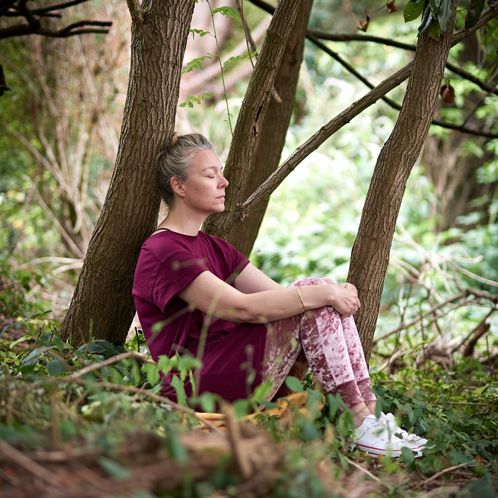 Green zone: Scientific research backs the benefits of forest bathing