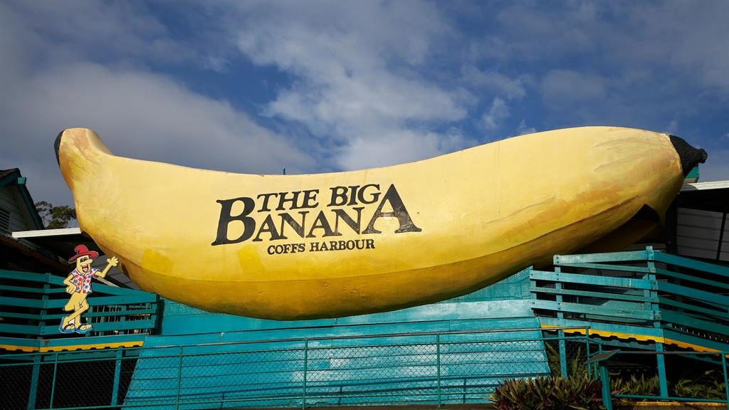 Fruit of the loon: The 13m-long Big Banana on a plantation in Coffs Harbour should be at the top of any bucket list PIC: ALAMY