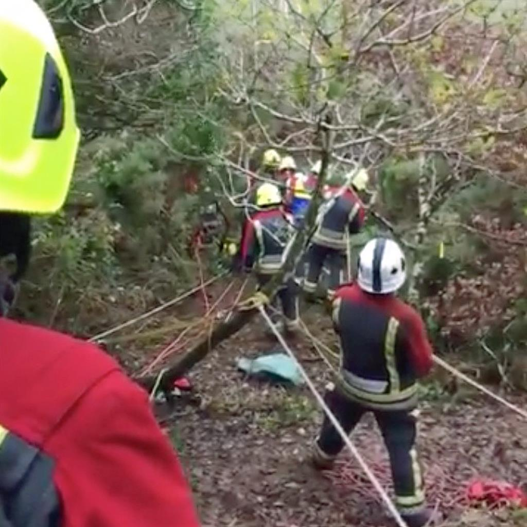 Saved: Crews hoist the dogs to safety near Truro PICTURE: CORNWALL FRS/APEX