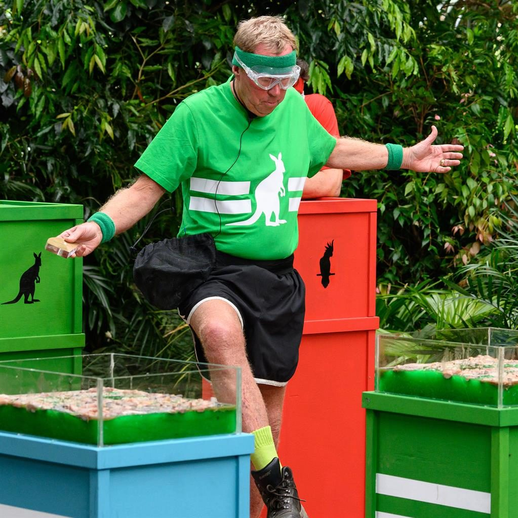 Goggle blocks: Harry stumbling over the hurdles last night PICTURES: ITV/REX
