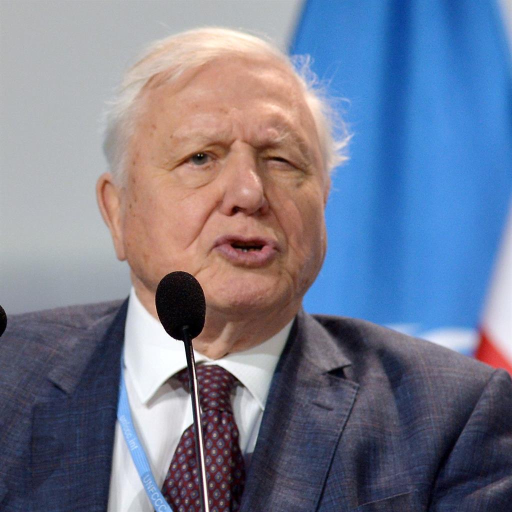 Man-made disaster': Sir David Attenborough addressing delegates PICTURE: REX