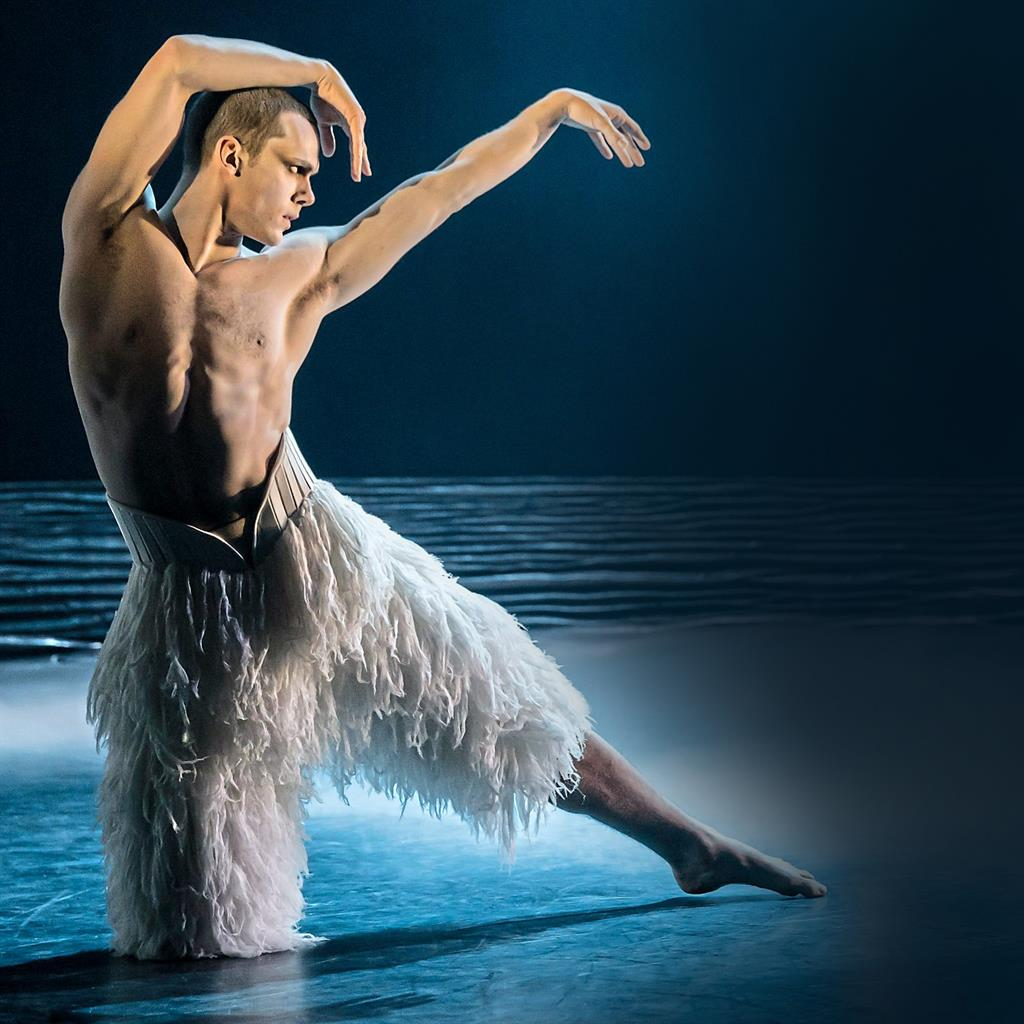 Chest amazing: The powerful Swan, danced here by Will Bozier