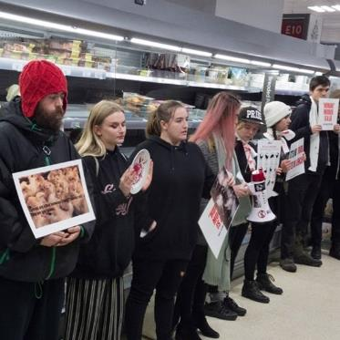 'Not food': Protesters hold up anti-farming signs in the meat aisle