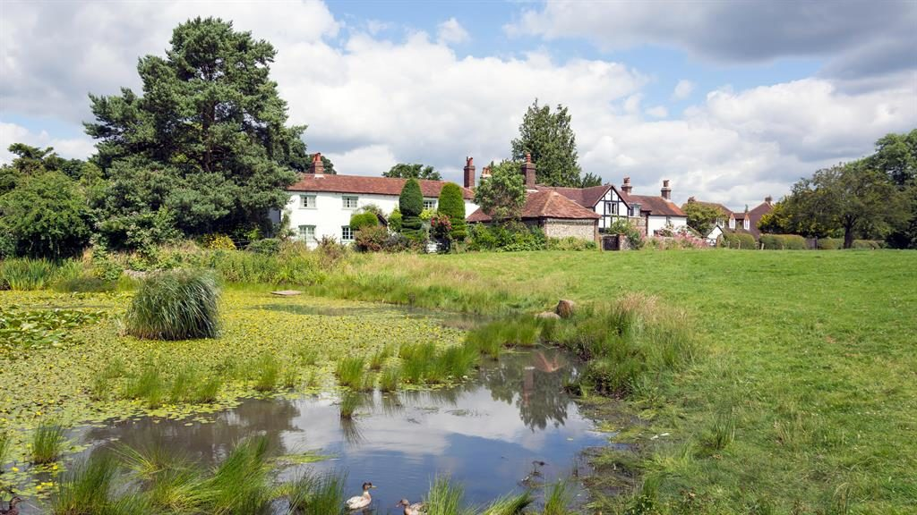 Tranquil: Cottages by the pond in Old Coulsdon PICTURE: ALAMY