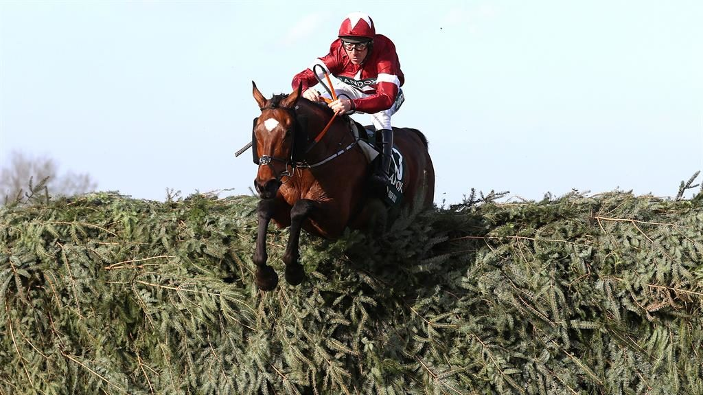 National hero: Tiger Roll PICTURE: PA
