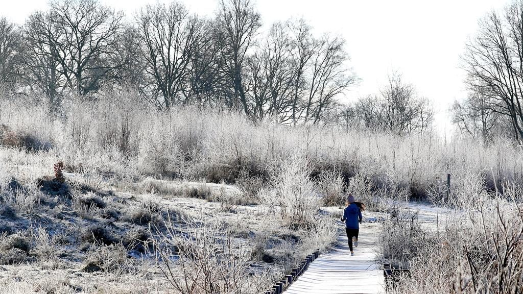 Cold runnings: A woman jogs through a frosty landscape near Ashford in Kent, after the UK had its coldest night of the winter PICTURES: PA