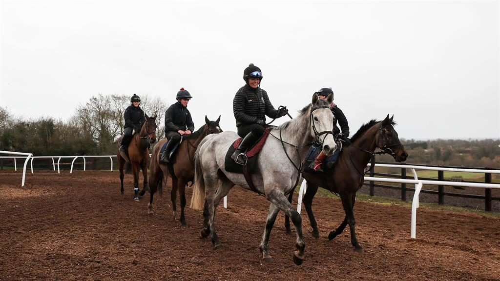 Nowhere to ride: Exercises at a Worcestershire yard yesterday PICTURES: GETTY/PA