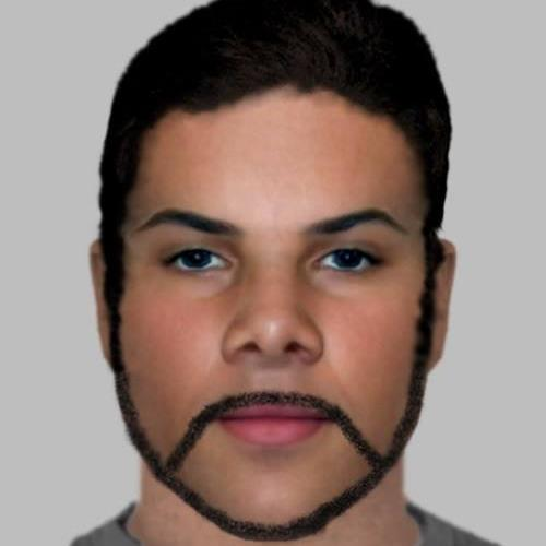 Fit-up: The e-fit of a suspect involved in an Essex burglary has been mocked online for resembling Craig David