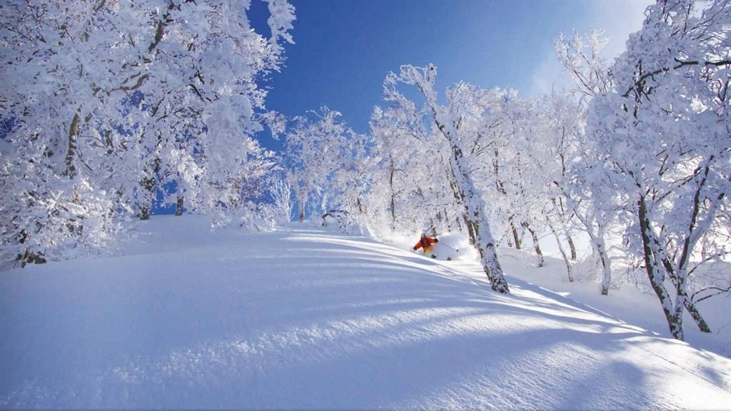 On safari: Tour the Nagano and Niigata ski resorts in the Japanese Alps
