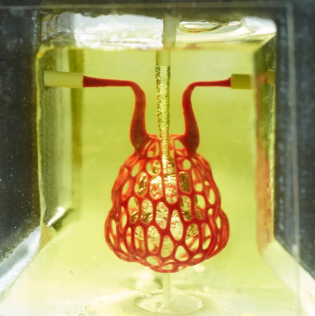 Take a deep breath: The hydrogelbased model of a lung that behaves like a natural one