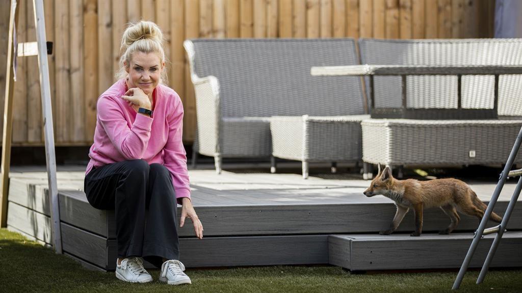 Outfoxed: Zoe Hunt's garden has been overtaken by a skulk of 'flea-ridden' foxes