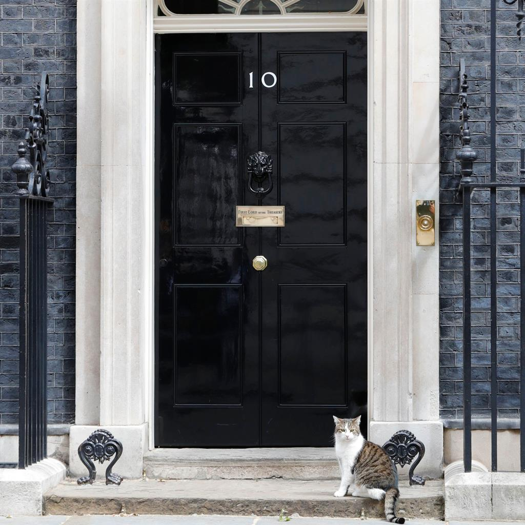 Permanent fixture: Larry the cat waits outside No 10 Downing Street to see who will be feeding him next  PICTURES: REX/PA/EPA/GETTY