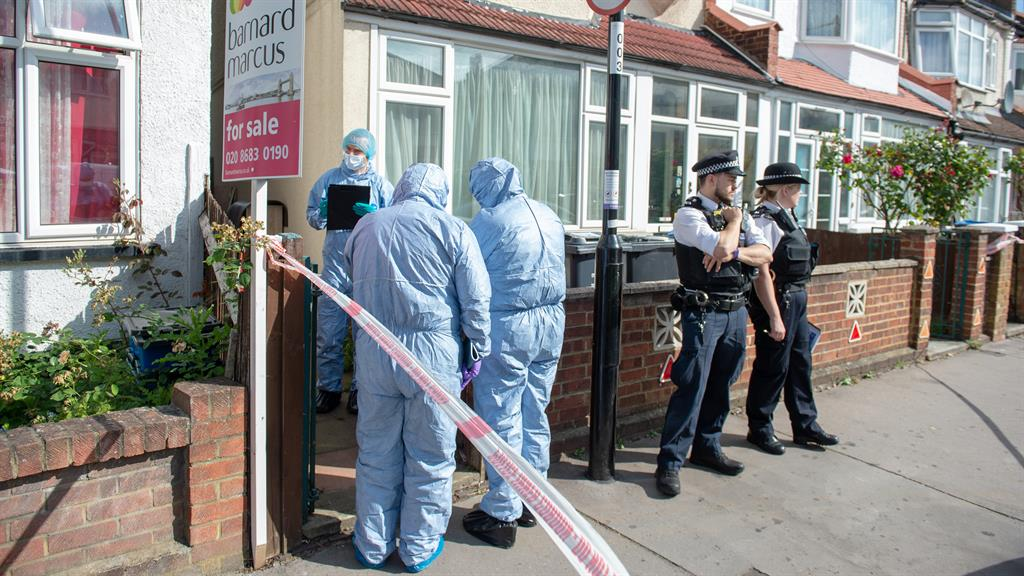 Pregnant woman stabbed to death in London