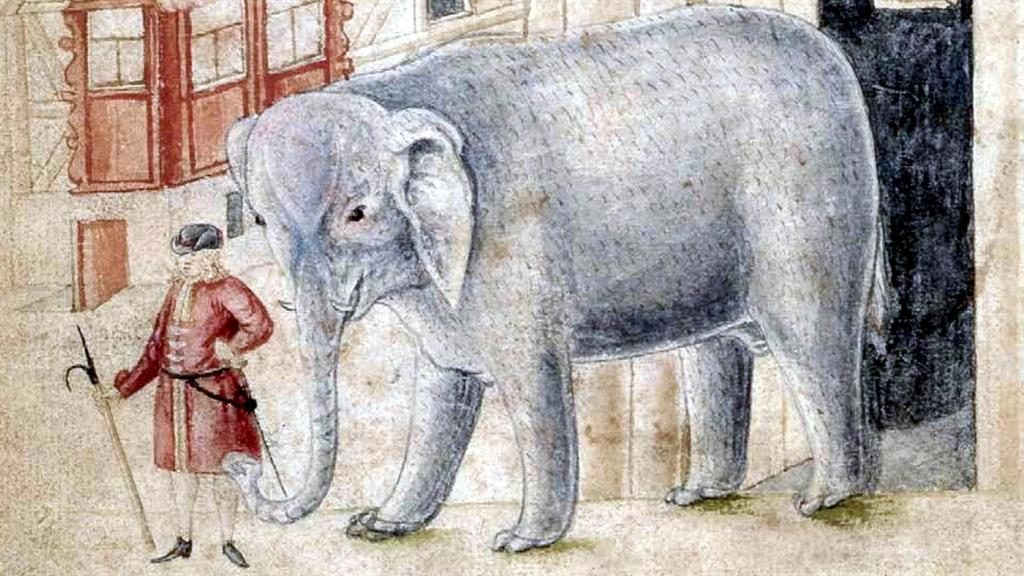 Trunk calls: An 18th century illustration of Abraham and his elephant PICTURES: SWNS