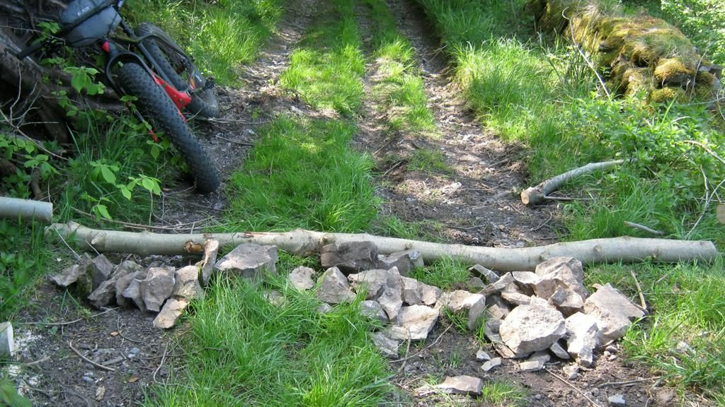 Bump in the road: A branch and rocks piled on a Peak trail PICTURES: SWNS