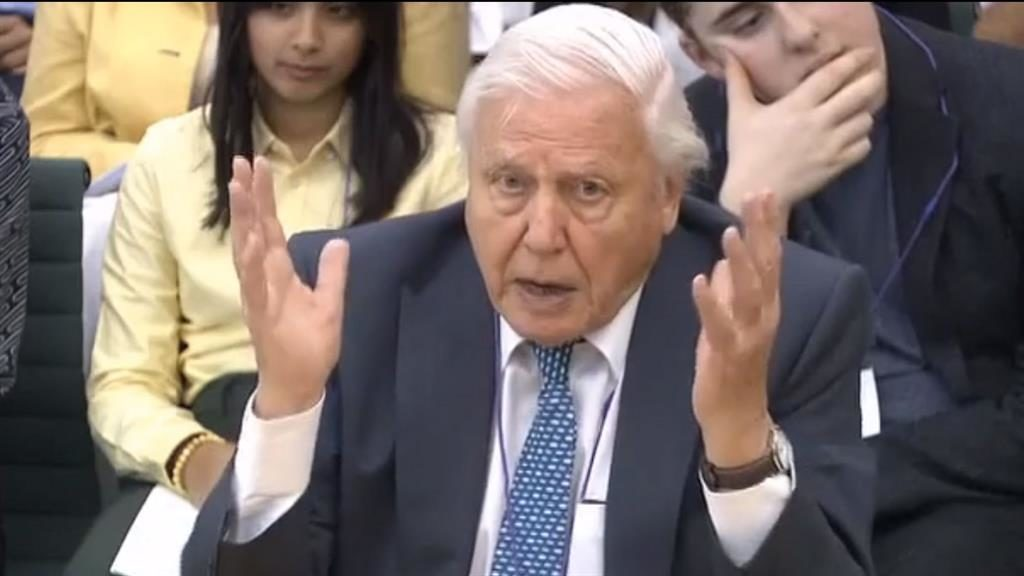 'Great change': Sir David told MPs we need to alter our diets and lifestyles to tackle climate change PICTURE: EPA