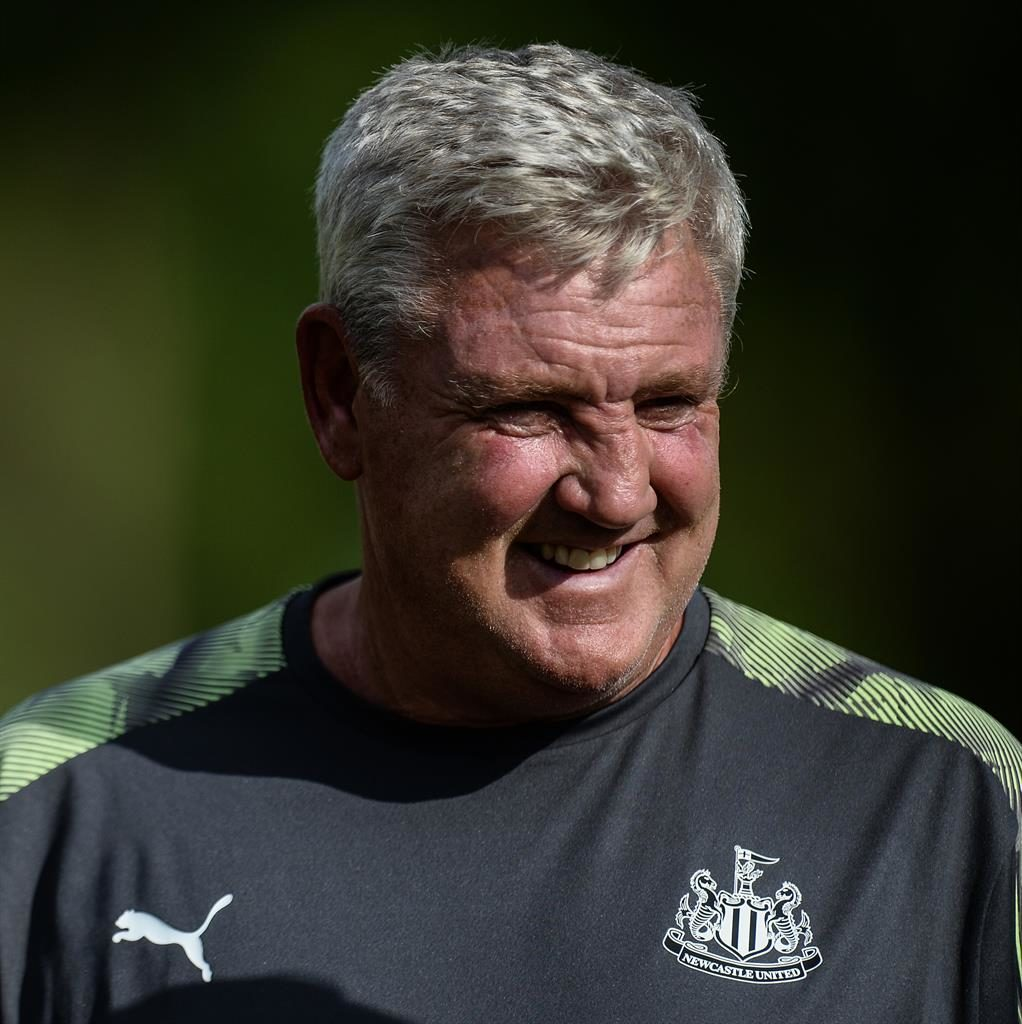 Bruce insists he's no puppet for Newcastle owner Ashley