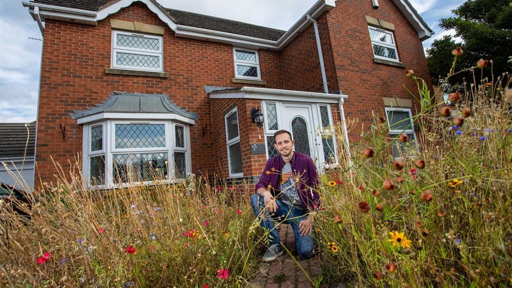 Blooming marvellous: Peter Thain in the wild meadow he sowed in front of his house PICTURES: SWNS
