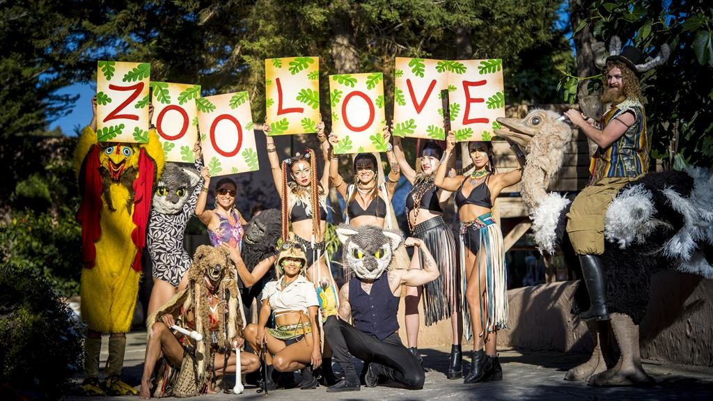 Party animals: The Zoo Project at Benimussa Park aims to protect Ibiza's seabed and help reforest the planet