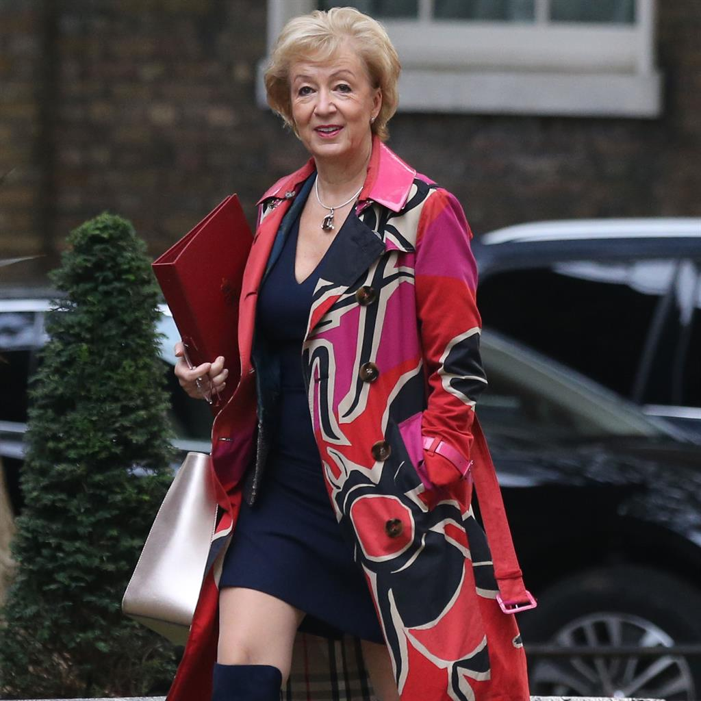 Andrea Red-som: The business secretary wore a long coat and knee-high navy boots to No.10 PICTURES: AFP/GETTY/PA