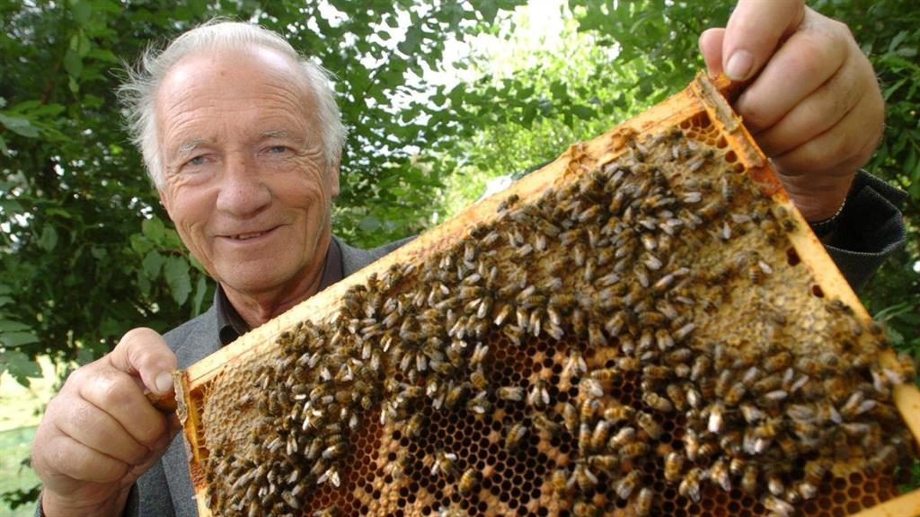 Honey in the bank: Apiarist Ron Hoskins PICS: SWNS