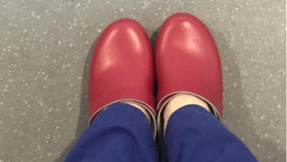 Putting her foot down: Dr Katie Sanderson's red clogs