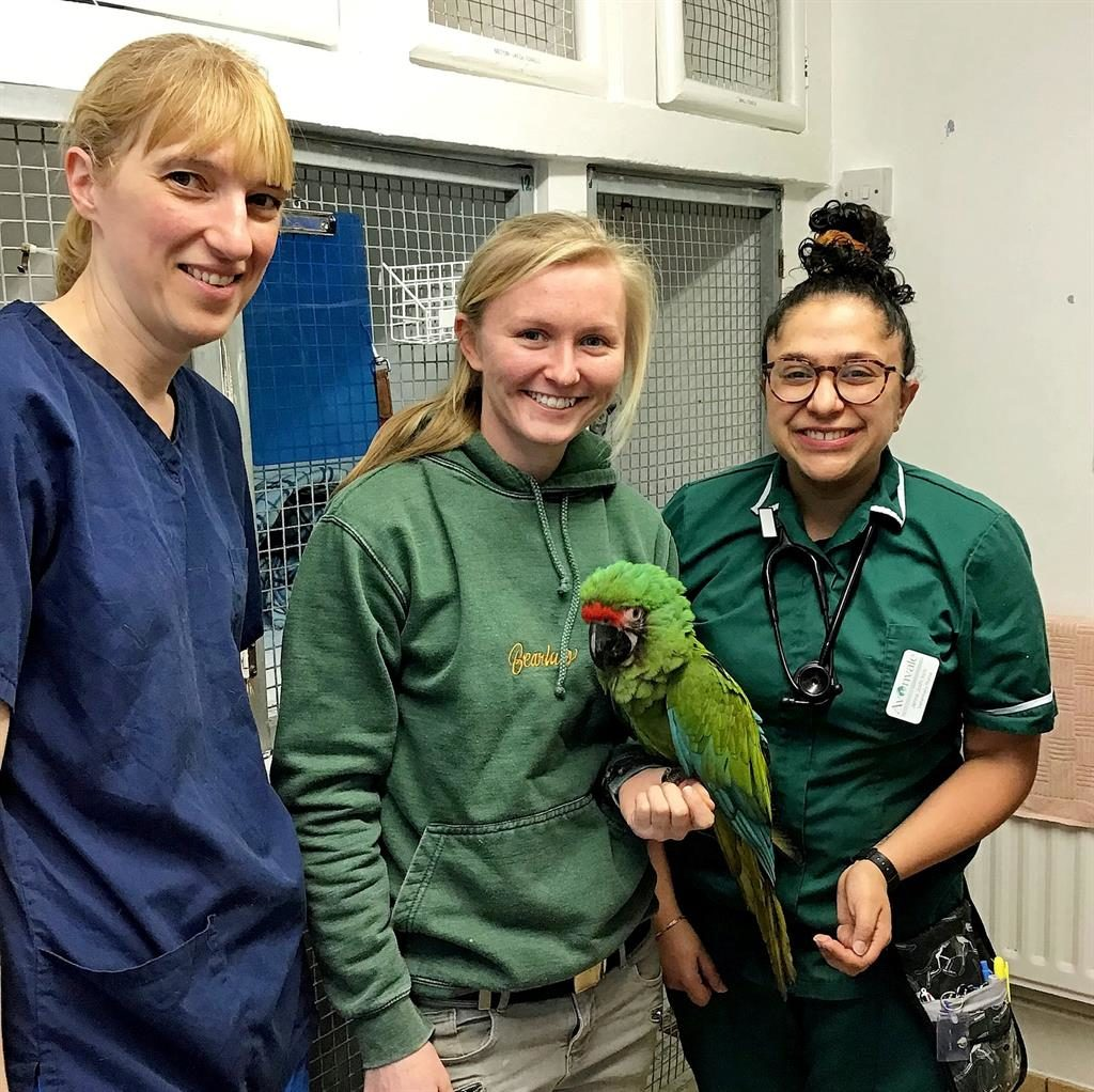Long gone silver: Avonvales Heathcote team hand over Wilma to Wild Zoological Park PICTURE: SWNS
