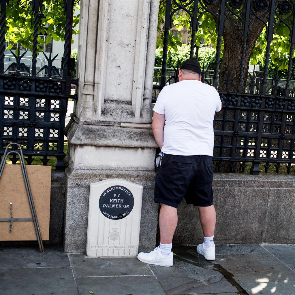 Revolting scene: Andrew Banks (also pictured below) relieves himself by the memorial to PC Keith Palmer during protests near the Houses of Parliament on Saturday