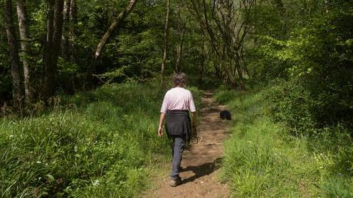 Walking cure: No doubt it's good for us, but not everyone has easy access to green spaces PICTURE: PETER TURNER PHOTOGRAPHY/SHUTTERSTOCK