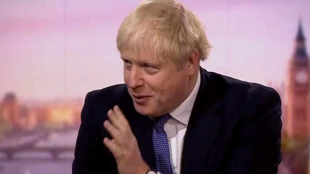 'Working flat out': Boris Johnson on the BBC's Andrew Marr Show