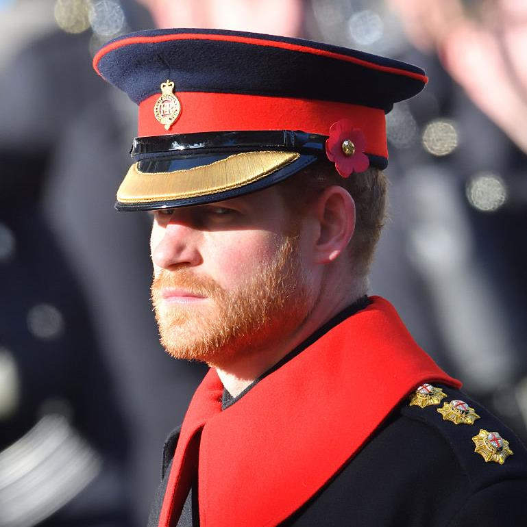 Absent Prince Harry's Remembrance message of togetherness from US