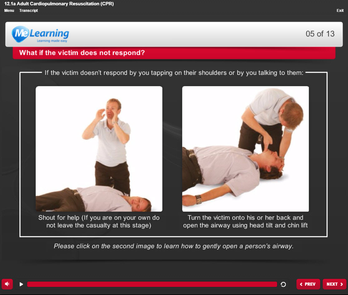 Basic Life Support (BLS) - for Health and Social Care Course Slide 5 of 13