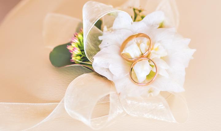 our secret wedding - rings on a cushion