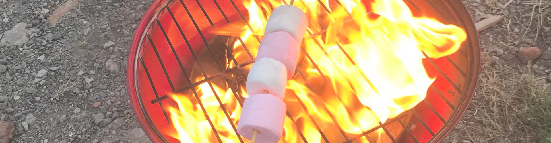 marshmallows toasting on a fire pit