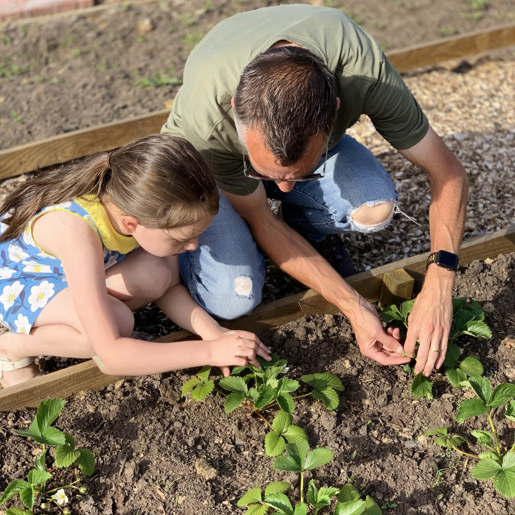 father and daughter working on a vegetable patch. Summer fashion for Dads