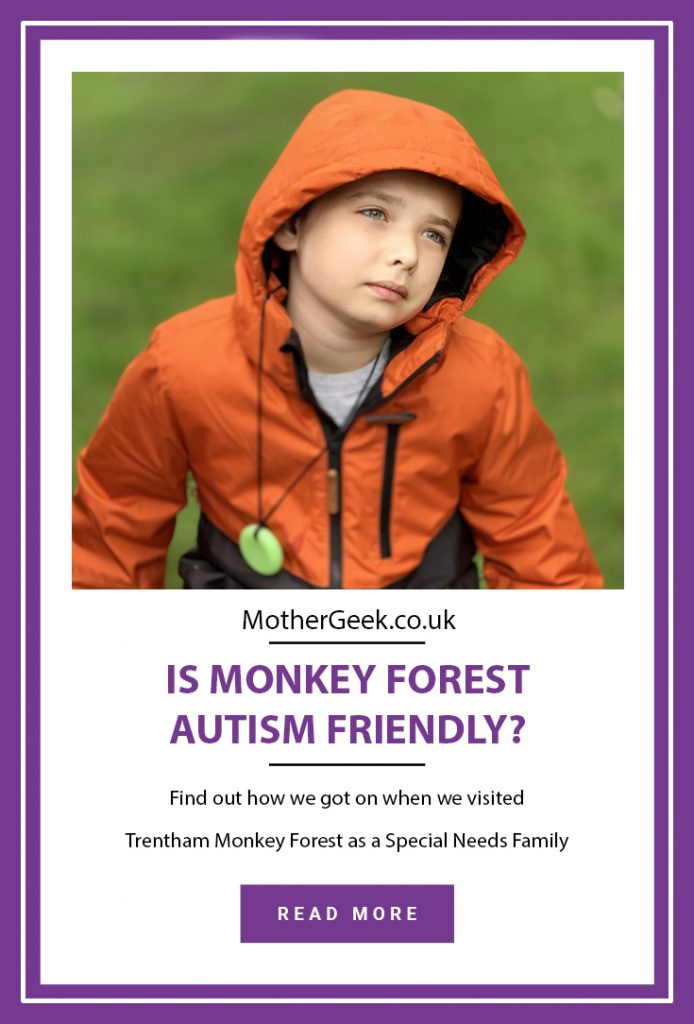 Is Monkey Forest Autism Friendly pinterest pin