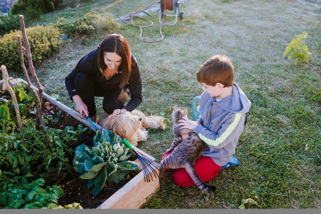 Mother, her son and dog in the garden - planting a bee friendly garden