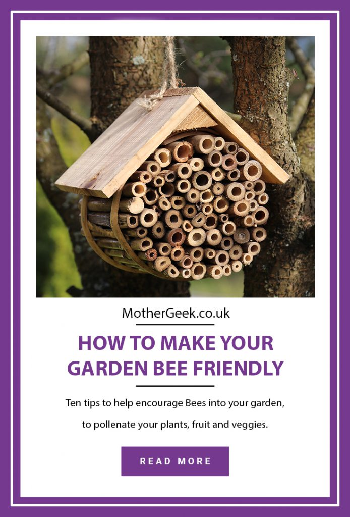 pinterest pin titled - how to make your garden Bee friendly