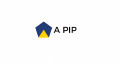 What is a pip?