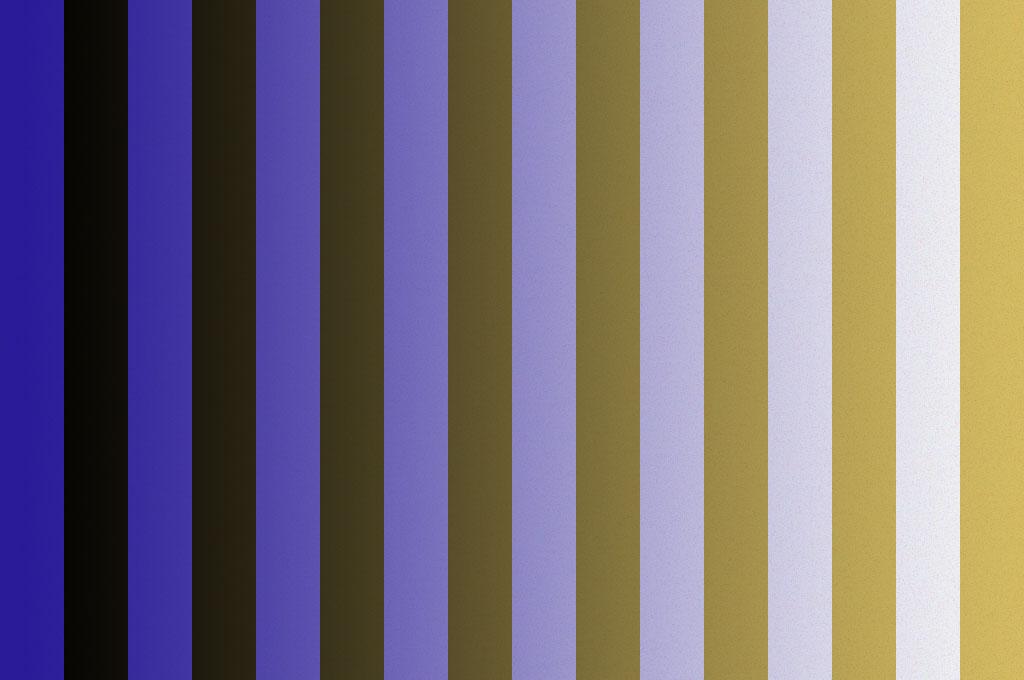 Blue & Black or White & Gold
