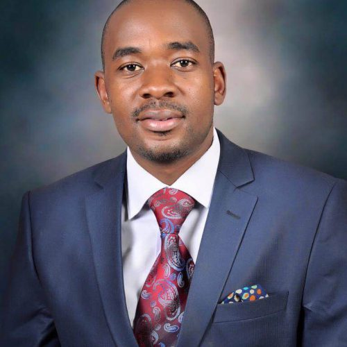 Chamisa launches new battle of Chinhoyi