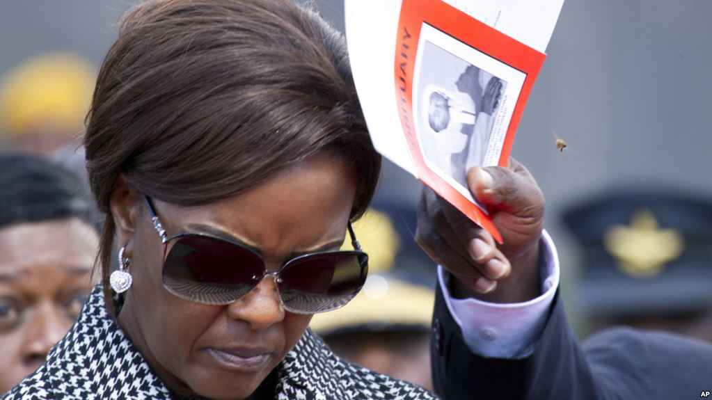 Grace accused number one in fake degree saga, says Ncube's MDC