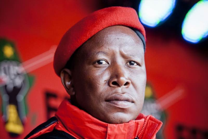 ANC begs Malema to return