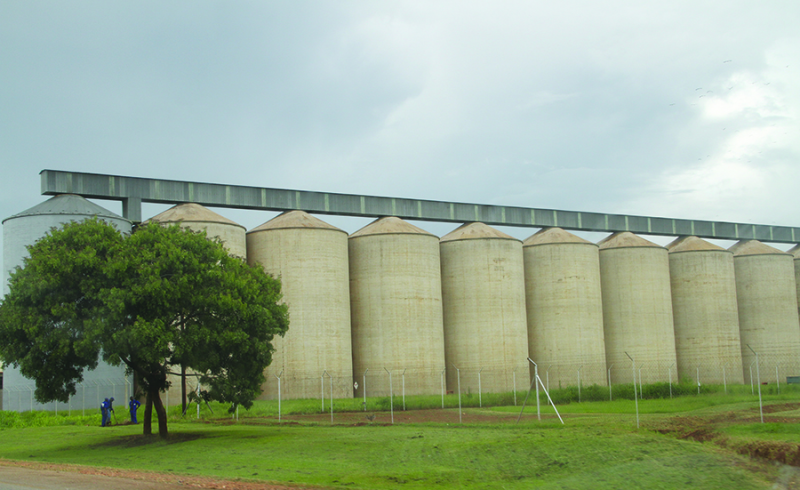 Zimbabwe to have sufficient maize stocks despite low production in 2018: agency