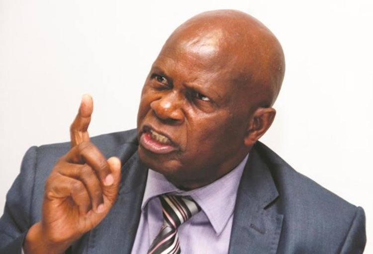 ED's son and Chinamasa run cash black market: Mugabe-linked party