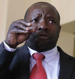 Manheru bristles at Zanu PF sting