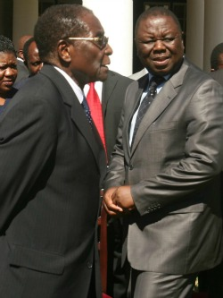 Equal stakes politics: The  future for Zimbabwe