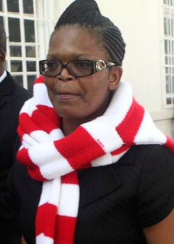 Targeting of Mtetwa provides  snapshot of more sinister trend
